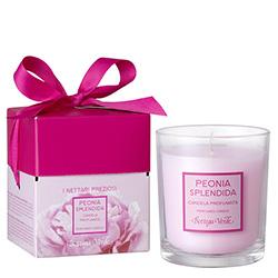 Lumanare parfumata Peonia Splendida, roz - I Nettari Preziosi