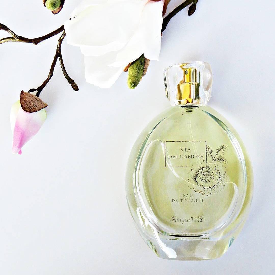 Clasificarea Parfumurilor Cu Note Lemnoase Bottegaverdero